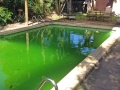 Vinyl Liner Pool Before restoration