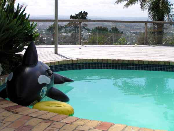 Wisher Grey Painted Pools Paint For Your Pool