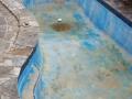 Empty pool before restoration