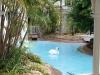Sheraton Mirage Hotel and Resort with white swan